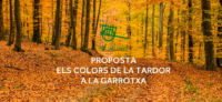 As cores do outono no Garrotxa